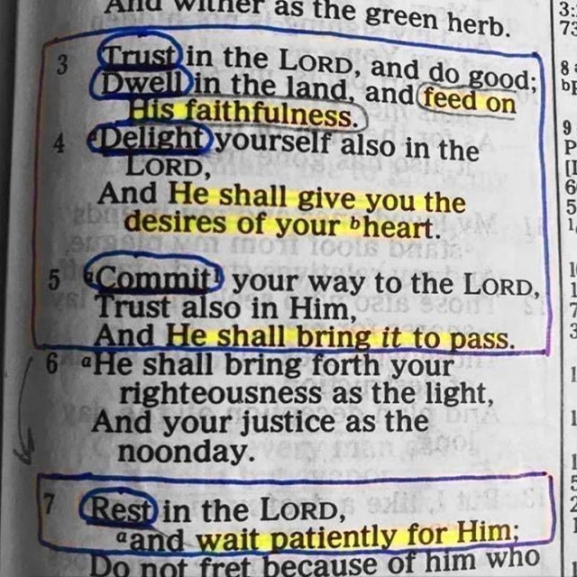 Amen to that!⠀⠀ Psalm 37:3-7...