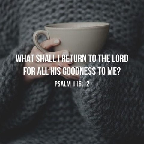 This verse stopped me in my tracks... God is SO good and we should strive to liv...