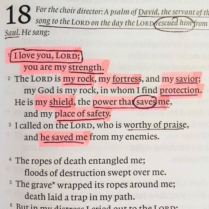 Psalm 18⠀ Perfect for the World's current challenges ...