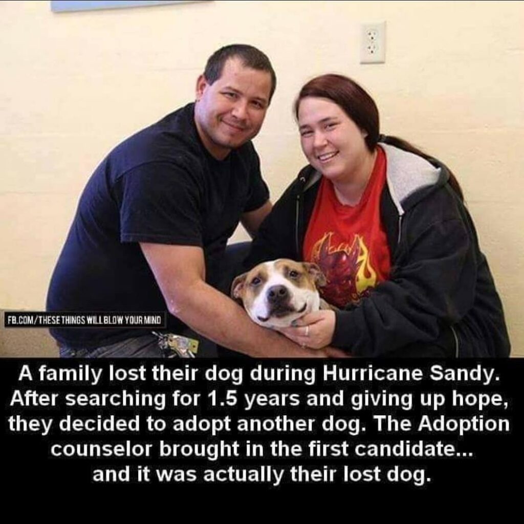 Just because there is always a happy ending !...