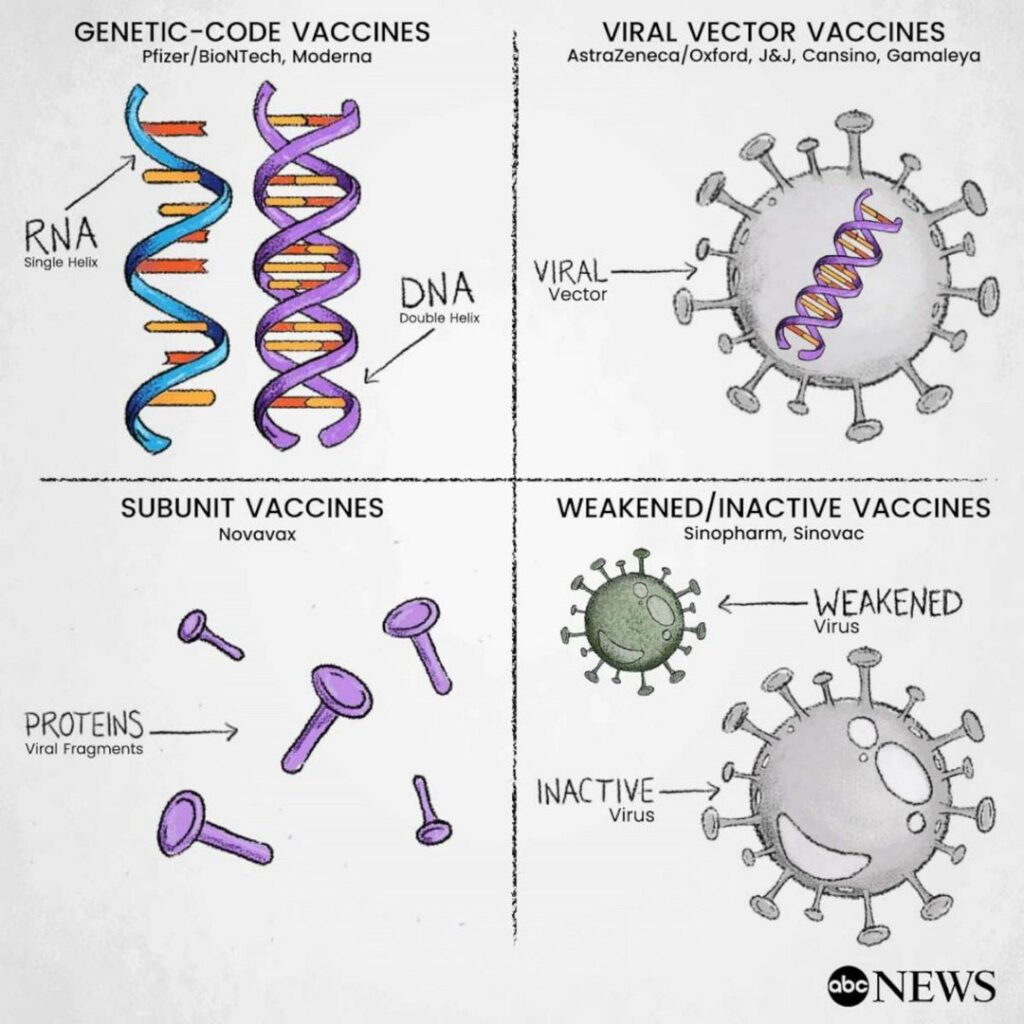 Currently there are at least 48 COVID-19 vaccines being tested in experiments wi...